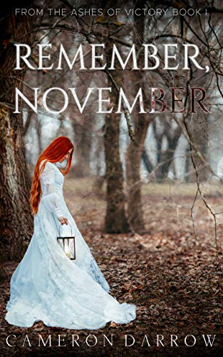 Remember November by Cameron Darrow